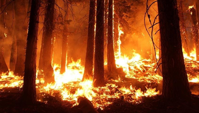 Se dispara el peligro de los daños secundarios de las catástrofes naturales
