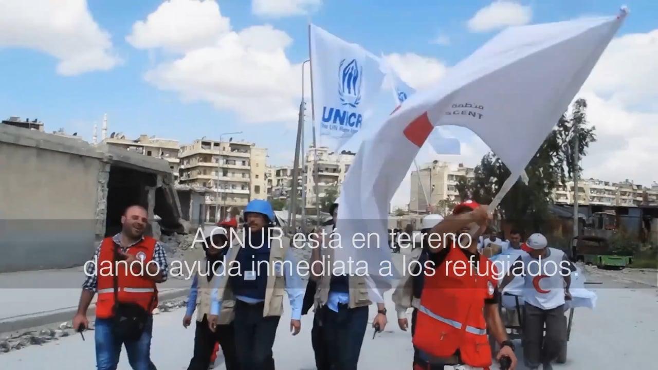Conoce más a fondo la labor de Acnur con los refugiados
