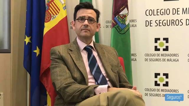"""""""Nos gustaría que quien lidere el Consejo Andaluz sea una persona sin conflictos de intereses"""""""