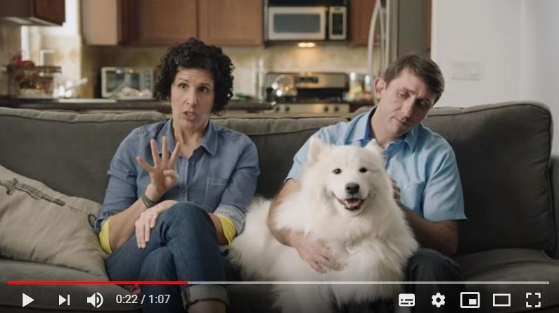 Si cuidar de tu mascota te supone un problema es que necesitas un seguro
