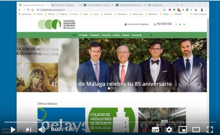 El Colegio de Málaga edita un tutorial para elaborar la DEC
